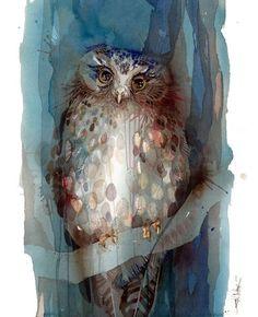 LOHRIEN - Illustrations by Rachel Walker