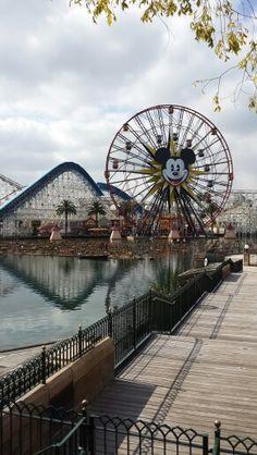 Disney parque