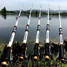 Fishing Rod Brands, Fishing Rods For Sale, Carp Fishing Rods, Trout Fishing Tips, Fishing Rods And Reels, Fishing Guide, Kayak Fishing, Fishing 101, Crappie Fishing