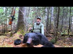 Amur bear hunt with Sergey outfitter