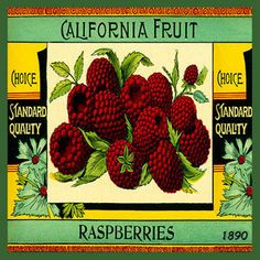 Olde America Antiques | Quilt Blocks | National Parks | Bozeman Montana : Vintage Canning Labels Hot Pads - California Fruit Raspberries
