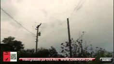 RAIN OF SPIDERS IN BRAZIL.. AMAZING!! FEBRUARY 8 2013.....now this is freaky.....raining spiders in Brazil,,,,,wow