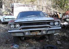 classic cars rotting  | New Photos Added January 19 2012