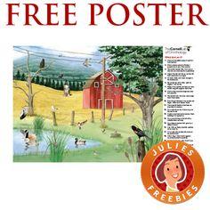 Free Backyard Bird ID Poster