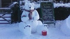 snow | BBC - Blogs - Wales - There's snow business like snow business...