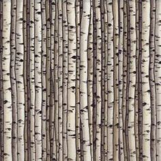 Silver birch fabric would love to use this for something, anything
