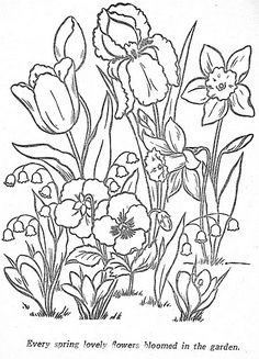 Spring flowers - Tulips, Daffodils, Lily of the Valley, Pansy's & Crocus