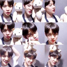 one Jisung Seungwoon Minhyun Daniel Seongwoo Jaehwan Woojin Jihoon jinYoung Daewhi GuanLin Bae Jinyoung Produce 101, All Meme, Syaoran, Fandom, Thing 1, Produce 101 Season 2, Kim Jaehwan, Ha Sungwoon, 3 In One