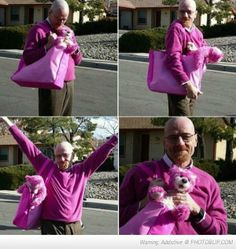 Breaking Bad's Aaron Paul shared a photo collage of Bryan Cranston's character, Walter White, acting silly with the pink teddy bear, a memorable show motif. Bryan Cranston, Heisenberg, Walter White, Breking Bad, Funny Images, Funny Pictures, Funny Pics, Aaron Paul, Six Feet Under