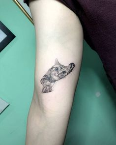 needle cat tattoo on the right inner arm. - Single needle cat tattoo on the right inner arm. -Single needle cat tattoo on the right inner arm. - Single needle cat tattoo on the right inner arm. Trendy Tattoos, Cute Tattoos, Unique Tattoos, Beautiful Tattoos, Small Tattoos, Tattoos For Women, Tattoos For Guys, Small Animal Tattoos, Cat Face Tattoos