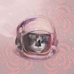 My work on S6. #NENEW #meow #kitty #cat #s6 #society6 #artprint #space
