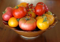 Bowl of Heirloom and Hybrid Tomatoes