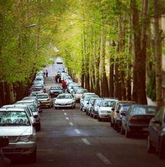 Tehran pure LOVE