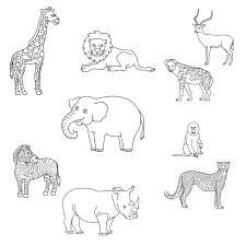 Les 70 meilleures images du tableau animaux afrique sur - Animaux afrique maternelle ...