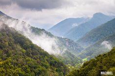 Muniellos antes del otoño Reserva de la Biosfera de Muniellos Asturias España by machbel