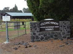 Southern most winery in United States. Volcano Winery, Big Island, Hawaii.