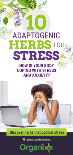 Stressed Out? 10 Adaptogenic Herbs That Help With Chronic Stress Health Talk, Health And Wellness, Mental Health, Chronic Stress, Stress And Anxiety, Health Articles, Health Blogs, How To Cure Anxiety, Affirmations