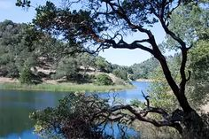 Ultimate Weekend Hike: Amble Around Marin's Phoenix Lake | 7x7