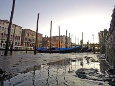A rare low tide has crippled Venice's canals.