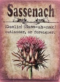 Saddenach; outlander, foreigner                                                                                                                                                     More