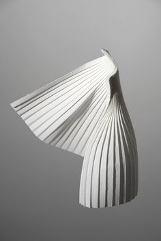 wet folded watercolor paper by Richard Sweeney (2010) http://www.richardsweeney.co.uk/motionforms.html #paper_art #pleats