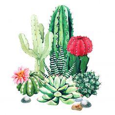 Watercolor Succulents, Watercolor Cactus, Green Watercolor, Watercolor Paintings, Cactus Drawing, Cactus Painting, Cactus Art, Cactus Planta, Cactus Y Suculentas