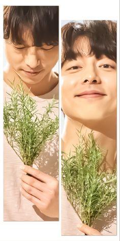 Goblin, Yoo Gong, Lee Dong Wook, Korean Actors, Kdrama, Romance, Beautiful, Colors, Romance Film