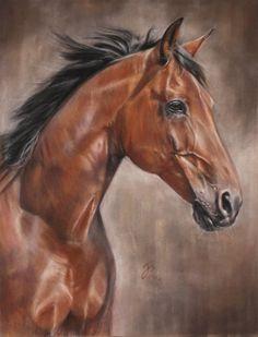 Pferdezeichnung / Pferdeportrait in Pastell Horse painting / Horse portrait in pastel Jutta Pallasch PASTELLBLICKE ~ TIERPORTRAITS