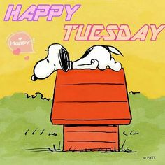 Snoopy Tuesday!