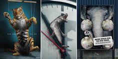 33 Мощные животных Рекламные кампании, которые говорят правду неудобно | скучно Панда