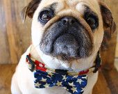Items similar to Dog bow tie and Dog collar combo in Red, White and Blue Stars and Stripes on Etsy, a global handmade and vintage marketplace.