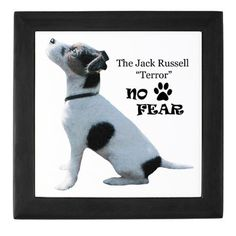 Jack Russell Terror NO FEAR Keepsake Box