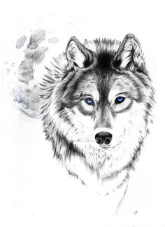 a wolf tattoo that I made for a friend, not to be reused, he has paid to be the sole user of this design. I likes it ^^ ^^ ^^ Edit: alright folks, I'm sorry to do this but I'm forced to put an ugly...