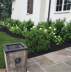 Love the beautiful simple landscape. Just needs boxwood. Lots of white hydrangea, grass, and skip laurel.