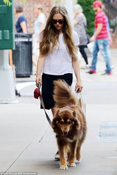 Joined at the hip: The actress seen again with her dog Finn recently in New York...