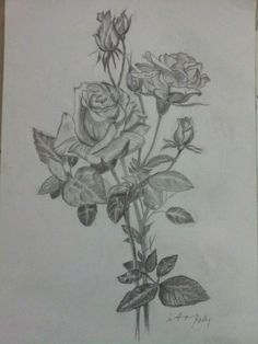 My pencil drawing