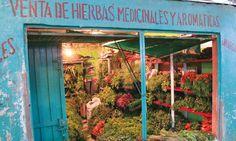 Medicinal and aromatic herbs - Plaza de Mercado Samper Mendoza #Bogotá