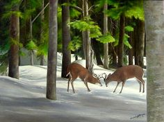 Fine Art by Brenda L. Capturing the joy of life's precious moments. Joy Of Life, Precious Moments, Oil On Canvas, Original Paintings, Challenges, United States, The Unit, In This Moment, Fine Art