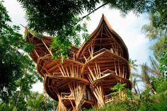Casas-de-Bambu-1