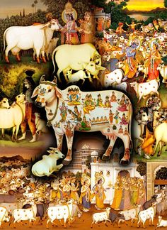 """""""O My Lord, Supreme God of the brahmanas, You are the well-wisher of the cows and the brähmanas. Dear Lord Krishna, You are the well-wisher of the entire human society and world and the beloved of the cows, who You love so much. Please accept my humble obeisances."""" (Vishnu Purana 1.19.65)"""