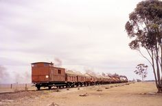 photos of steam, electric and diesel trains in Victoria, New South Wales and South Australia Travel Pics, Travel Pictures, Diesel, Steam Railway, South Australia, South Wales, Photographs, Photos, Train Station