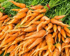 Orange Carrots at the Market. Fine Art Food Photography Print for Home Decor Wall Art. Group of fresh picked orange carrots on display. This display of carrots has the green stems still attached which makes a nice color contrast with the orange of the carrots. ~~ SELECT DESIRED SIZE USING THE OPTIONS BUTTON ABOVE ADD TO CART. Available in: 5x7, 8x10, 11x14, 12x18, 16x20, 20x30, 24x36 prints.