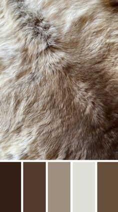 WALK THE TALK - Deer hides take me back to growing up on a deer farm. Check out the blog to find out how to track your story x