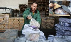 Chinese gangs smuggled 40 year old frozen MEAT which ended up on family tables http://dailym.ai/1QQDwyf