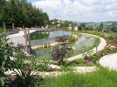 BioNova® Natural Swimming Pools | Gallery – NSP Design Photos