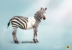 Tide: Zebra Removes stains in one go. Ads Creative, Creative Advertising, My Beautiful Laundrette, Brand Advertising, Advertising Campaign, Funny Ads, Great Ads, Sick Kids, Ad Design