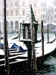 The quiet beauty of falling snow...  Winter in Venice, Italy
