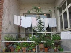 Balcony garden.... this balcony seems to be an important part of the home.  .. nice to have.