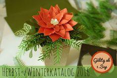 Der Herbst-/Winterkatalog 2016 - Vorgebastelt - Christstern Gesteck mit Anleitung www.Scherenherz.de mit Stampin'Up Produkten gebastelt