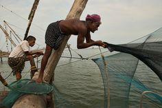 https://flic.kr/p/efZb3m | fishermen take in the morning catch in Fort Cochin (Kochi) in Kerala, India | fishermen take in the morning catch in Fort Cochin (Kochi) in Kerala, India